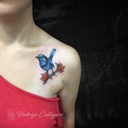 rodrigo-callegari-tattoo-other-25